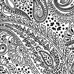 Large Paisley Positivity white black