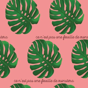 This is Not a Monstera Leaf