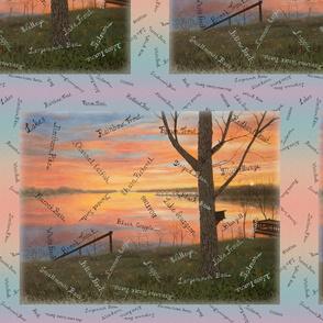 Panel Size of Sunrise Fishing at the Lake