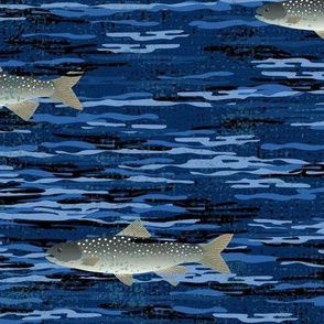Looking for Lake Trout ©Julee Wood