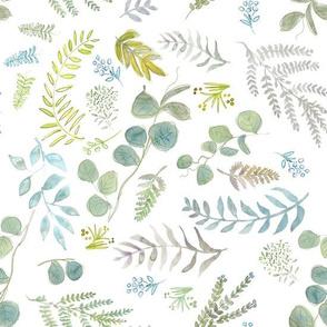 Botanical Eucalyptus Goodness