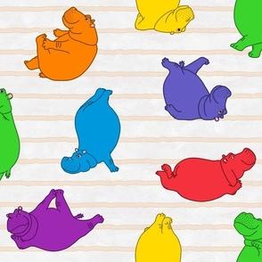 Hippo Workout 'bright rainbow'