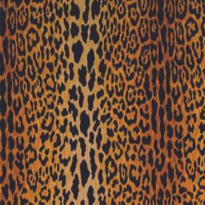 Leopard Background 3