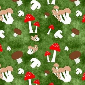 Mushroom Toss on Moss