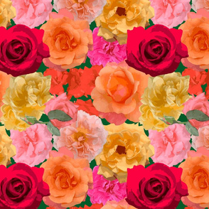 Roses of Loose Park