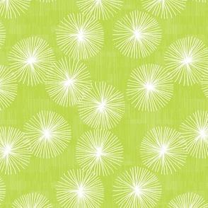 Small Dandelions M+M Wasabi by Friztin