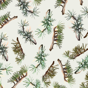 Pine tree needles and branches