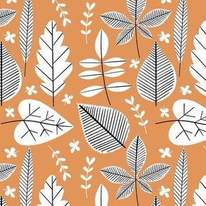 Houseplant Cuttings - Terra Cotta