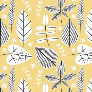 Houseplant Cuttings - Lemon