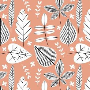 Houseplant Cuttings - Peach