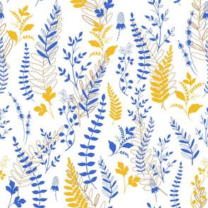 blue-yellow botany