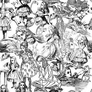 Alice's Adventures In Wonderland Toile Design Custom Fabric