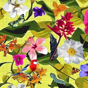 Tropical Garden Surrealism Paradise
