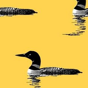Loon silhouette - black and white on yellow