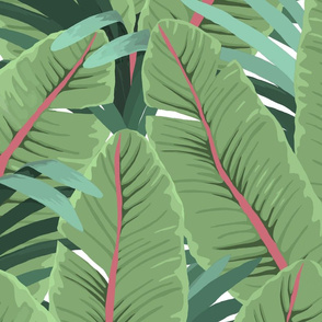 TROPICAL BANANA LEAVES white