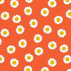 Mini Daisies Orange