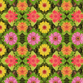 4_zinnias_45_poster_Picnik_collage