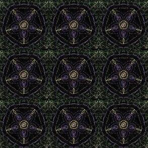 black_spiderweb_flower1