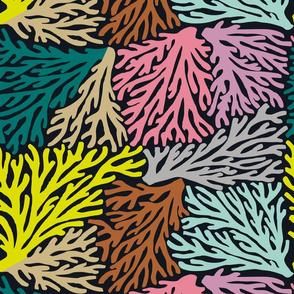 Coral Wave in Multi/Black