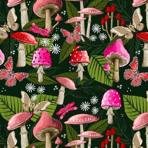 Mushrooms - Dark green background