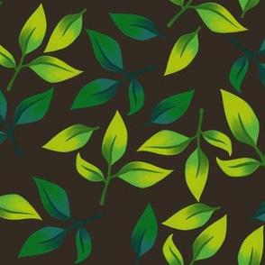 Leaves on Dark Brown
