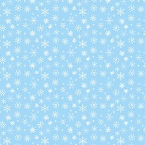 Snowflakes on Ice