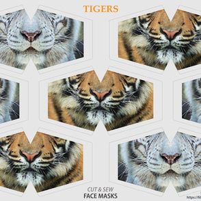 Tiger Face Masks Cut Out panel