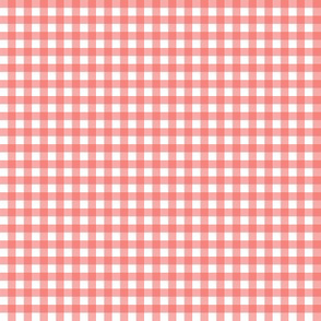 Coral Gingham Co ordinate
