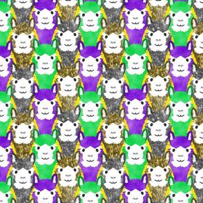 Alpaca pride - Mardi Gras