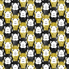 Alpaca pride - gold stripe