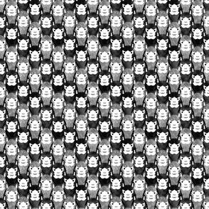 Small Alpaca pride - silver stripe