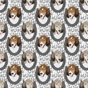 Parti Sable Standard Poodle horseshoe portraits