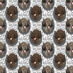 Brindle Standard Poodle horseshoe portraits