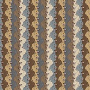 Small Multi-Colour Schipperke portrait pack