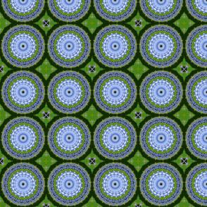 Blue and Green Hydrangeas 5354