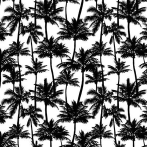 Palm Trees / Black And White / Mini Scale