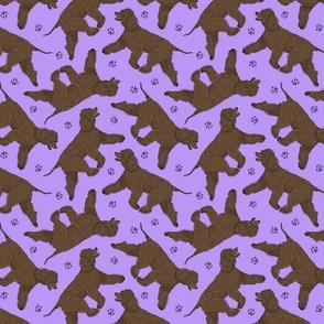 Trotting Irish Water Spaniels and paw prints - light purple