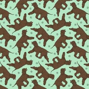 Trotting Irish Water Spaniels and paw prints - mint