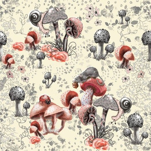 Fungi and Friends
