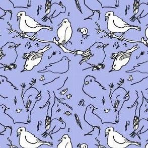 periwinkle bird drawings