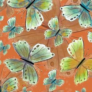 Debs butterfly orange