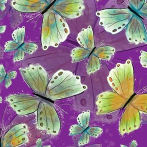 Debsbutterflyviolet