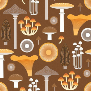 mushrooms on brown