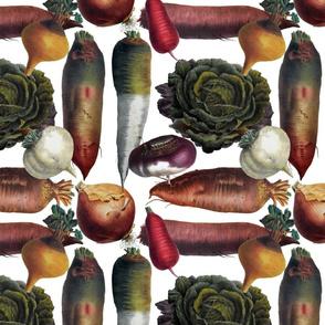 Market Day 3 for Root Vegetables