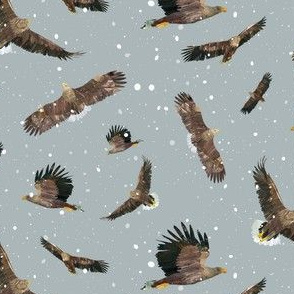 """Eagles in the snow - 2"""""""