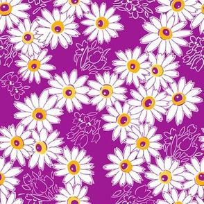 Daisy Garden - Purple