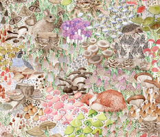 Mushroom garden with Quail, Hare, Fox, Frog, Hedgehog and thousands of different mushrooms