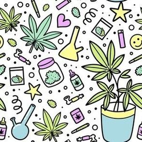 Small scale / marijuana plant