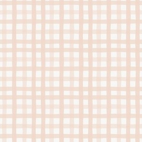 Gingham in Blush-2.67x2.67