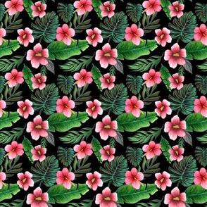 hibiscus tropical floral  black coordinate